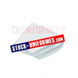 Crispins blanc de cérémonie garde au drapeau