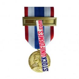 Médaille Protection Militaire du Territoire agrafe Harpie
