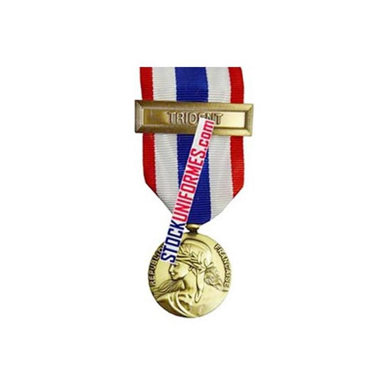 Médaille Protection Militaire du Territoire agrafe Trident