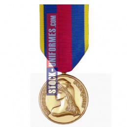 Médaille Or Réserviste...