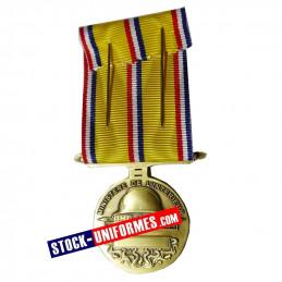 Médaille Sapeurs-pompiers 10 ans d'ancienneté échelon bronze