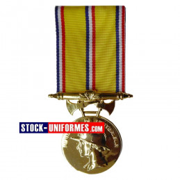 Médaille Sapeurs-pompiers 30 ans d'ancienneté échelon Or