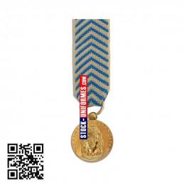 Médaille réduction Reconnaissance de la Nation - TRN - agrafe en option